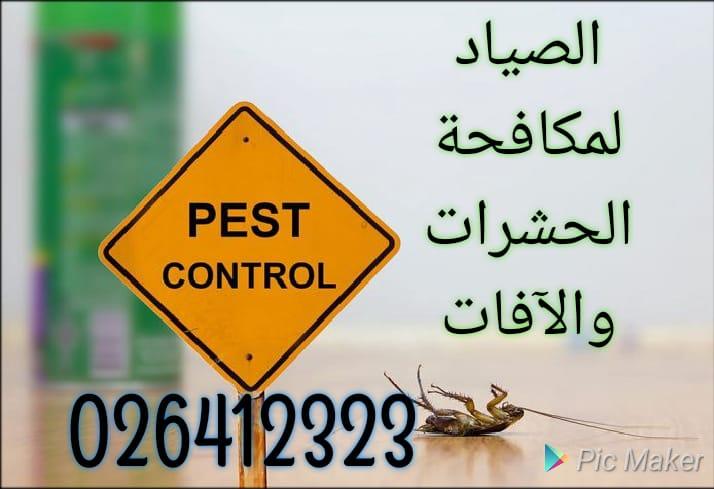 مكافحة الحشرات والتخلص منها