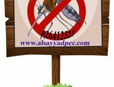 مكافحة الحشرات والافات في ابوظبي